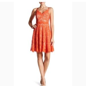 Orange Lace Skater Dress
